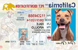 California ID drivers license Dog/Cat personalized pet tag a